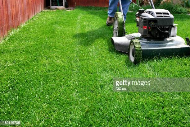 Yard Care-Rasen