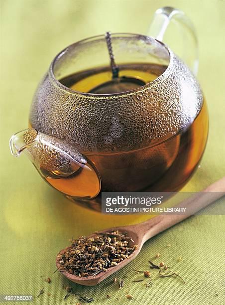 Yarrow herbal tea