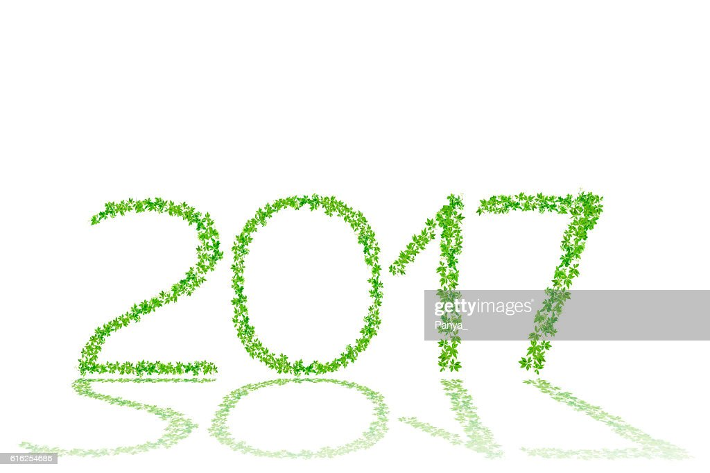 2017 year made from beautiful green leaves isolate on white : Foto de stock