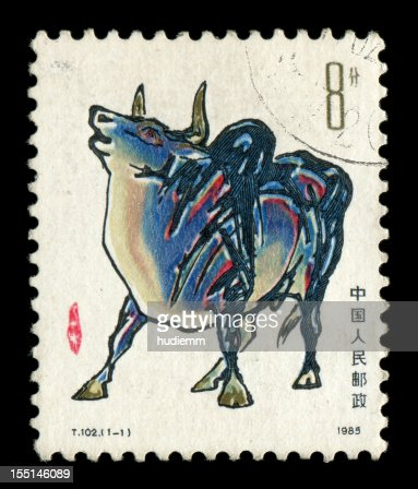 Year of the Ox : Stock Photo