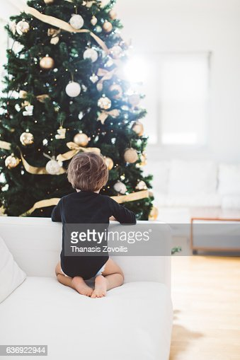 2 year old boy looking a christmas tree