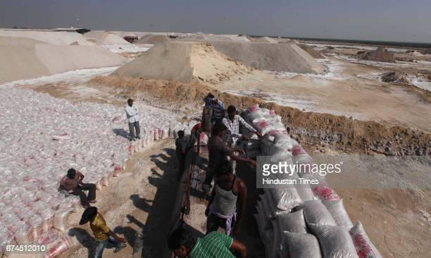 4 year old Mehul help his father Bharat Bamaniya for label the salt pan land where Salt Pan workers working in sunny day without resources around in...