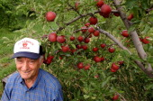 CITY CO74 year old twin brothers Albert and Mario DiNardo have been making ciders of all kinds since 1945 Their parents who emigrated from Italy in...