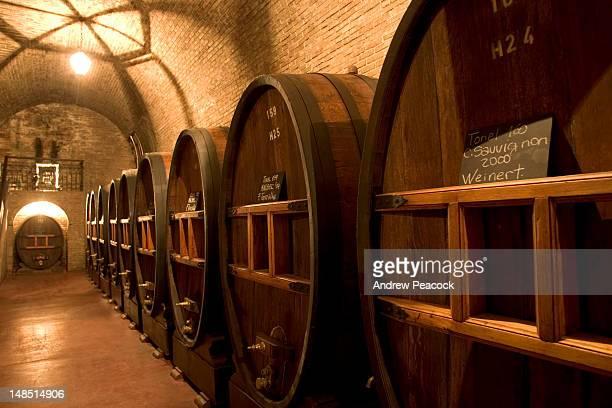 100 year-old French oak barrels at Wienert winery.