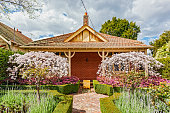 Charming 100 year-old Melbourne bungalow in leafy eastern suburbs with neat formal front garden.