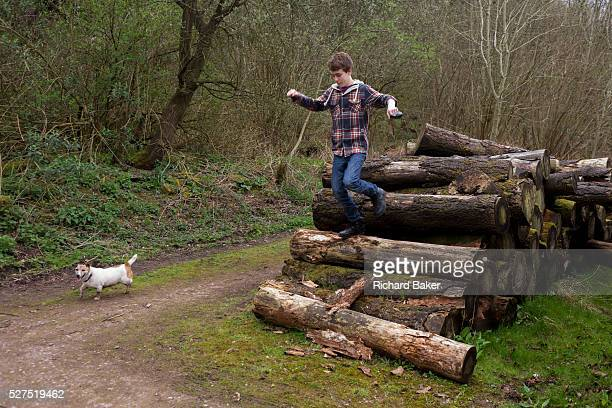 A 14 yearold teenage boy jumps down off a pile of logs during a countryside walk with his pet dog After running along the tops of the logs being...