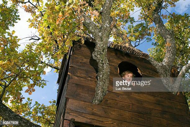 2-3 years old boy in a tree house.