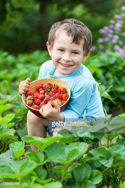 5 years old boy with fresh strawberries