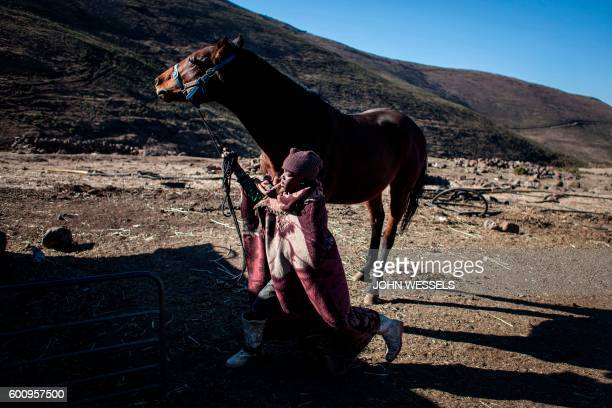 16 years old Mosotho jockey Mokikeng Tladi brushes his horse prior to the race day on July 15 2016 in Semonkong Horseracing in the mountain kingdom...