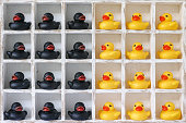 Pigeon hole box with 24 boxes, 12 are filled with yellow rubber ducks and 12 are filled with black ducks. Concept image representing, segregation, groups, racial difference, ethnicity etc.