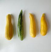 Yellow and Green Zucchinis
