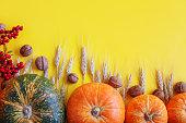 Yellow autumn background. Happy Thanksgiving background, Autumn harvest festival