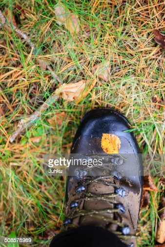 Yellow autumn leaf on a trekking boot : Stock Photo