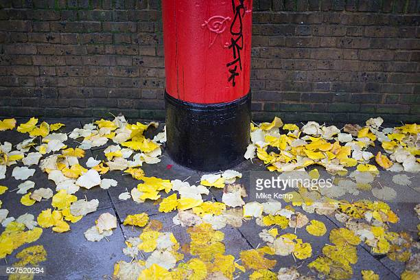 Yellow Autumn leaves fall and stick to the ground beside a red post box on a wet rainy day in Whitechapel East End of London UK