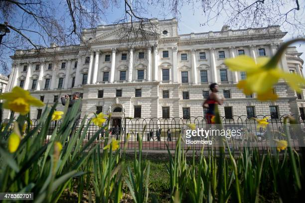 Yellow daffodils grow in a flower bed opposite the UK government's treasury building in London UK on Wednesday March 12 2014 UK Chancellor of the...