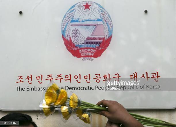 A yellow daisy flowers are seen as a symbol of friendships between Malaysia and North Korea in front of the North Korea embassy on 10 March 2017