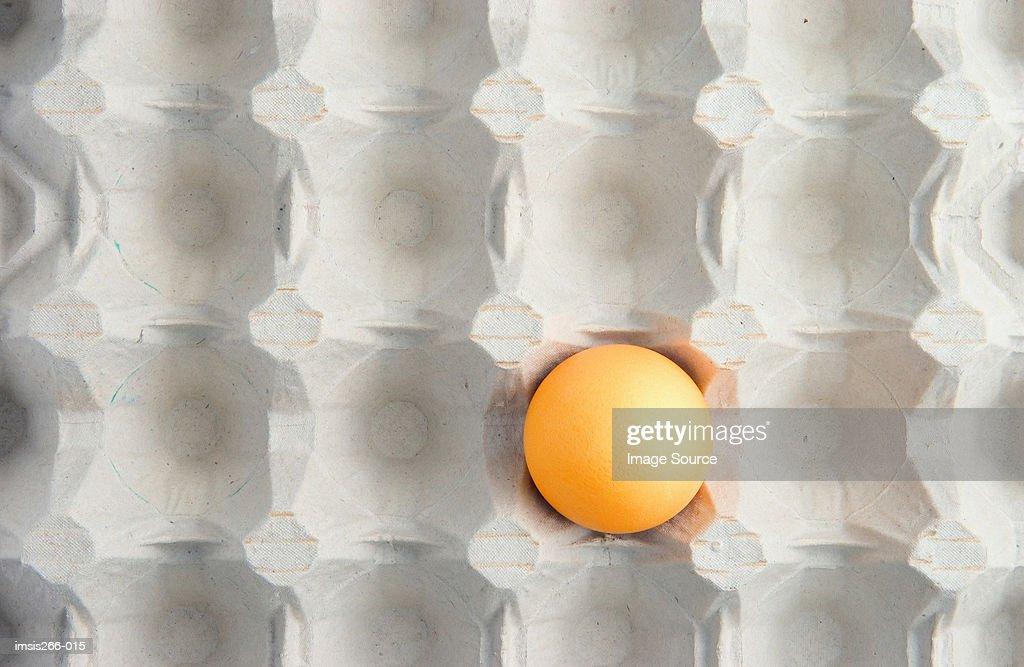 Yellow egg in carton