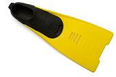 Yellow flipper