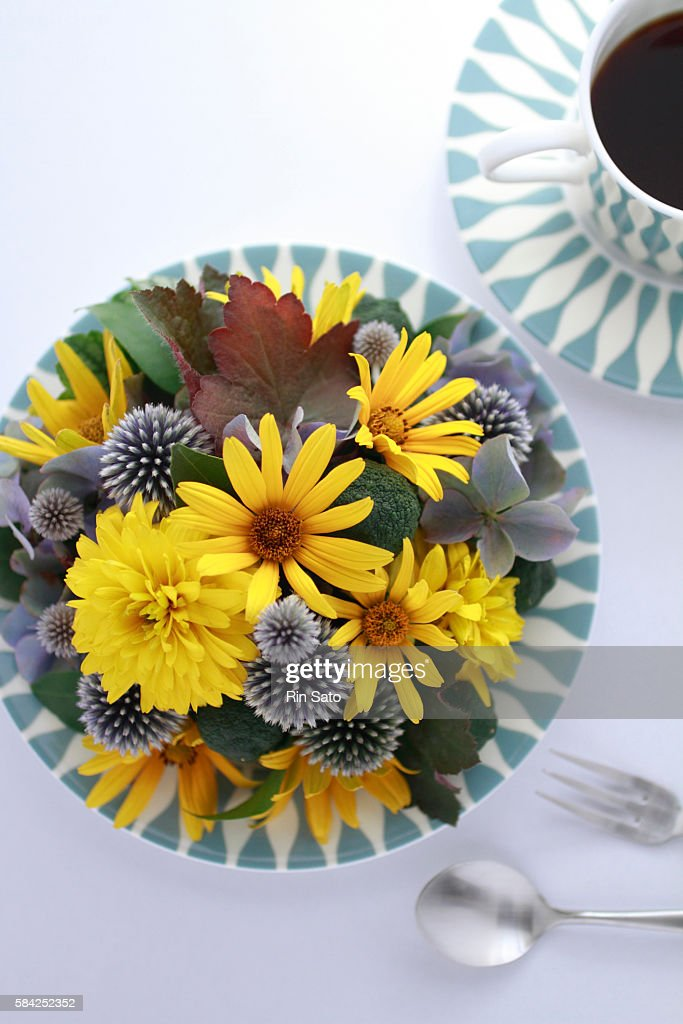 Yellow Flowers, Globe Thistle, and Autumn Hydrangea