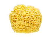 Yellow natural sponge flatlay top view isolated on white