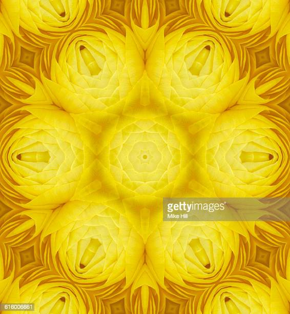 Yellow Rannunculus Mandala