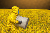 View of yellow rape field and men in protective hazmat suit, brown background
