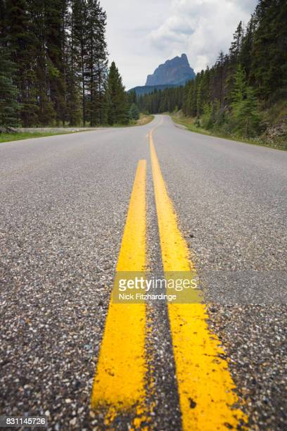 Yellow road markings lead along the Bow valley parkway towards castle Mountain, Banff National Park, Alberta, Canada