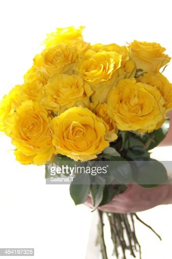 Yellow rose flower bouquet in the hand : Stock Photo