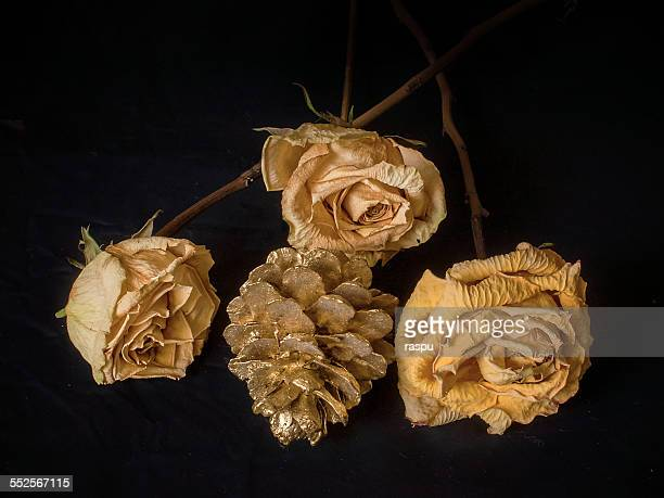 Yellow roses and a golden pine cone