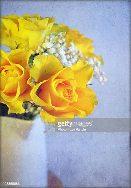 Yellow roses in white vase