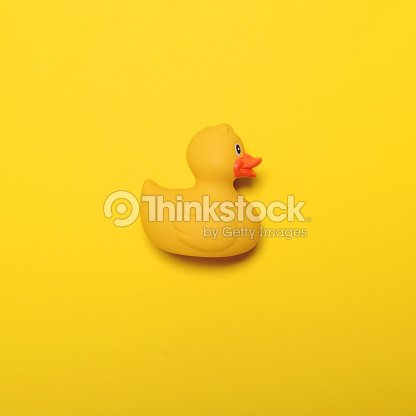 yellow rubber duck on yellow background minimal design ストック