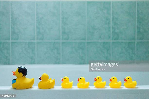 yellow rubber ducks in a row