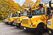 A row of yellow school buses parked at a lot against colorful autumn trees