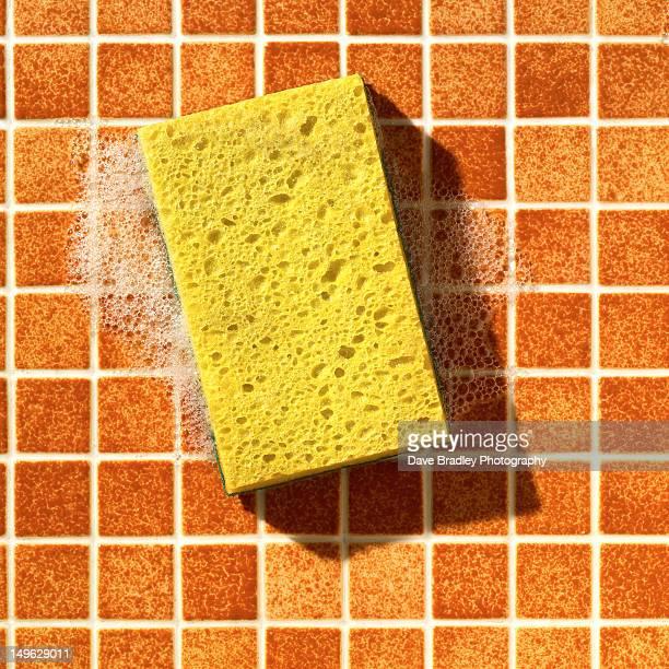 Yellow Sponge On Orange Tile