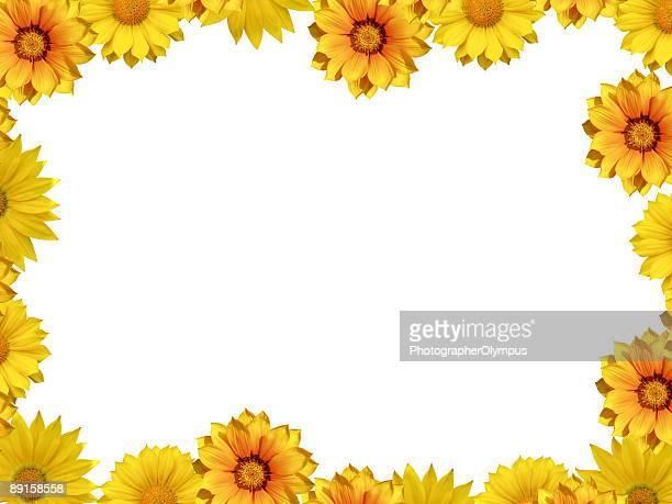 Yellow spring flower frame