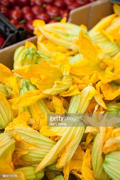 yellow squash blossoms