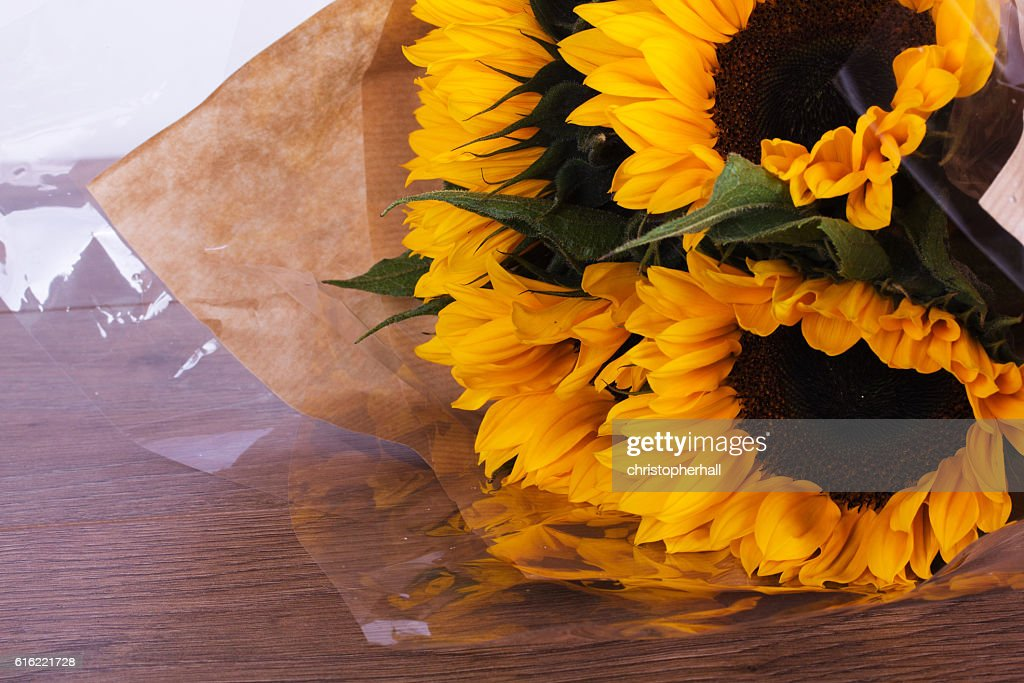 Yellow sunflower on against a rustic background : Stock Photo