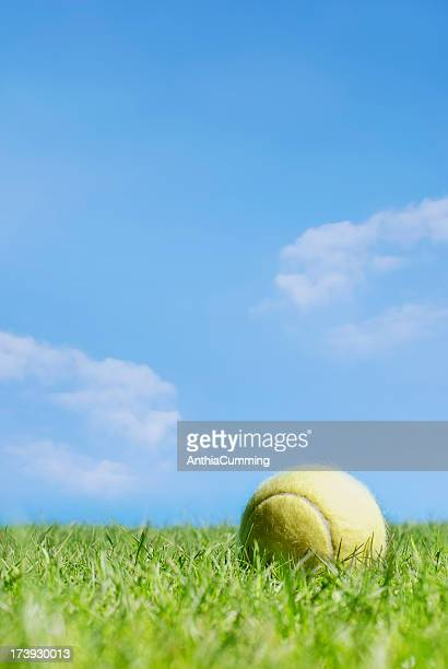 Yellow tennis ball lying in grass under blue sky