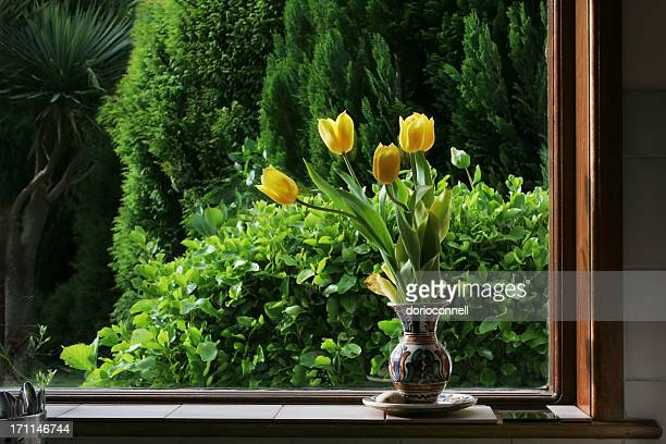 yellow tulips at kitchen window , spring time