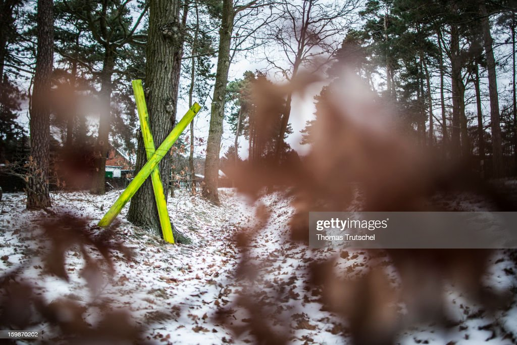 A yellow X sign is erected in a forest in order to protest against the interim storage facility for nuclear waste in the city of Gorleben on January 21, 2013 in Luechow. People in the Wendland Region fight many years against Gorleben as a position for the nuclear waste of german nuclear power stations.