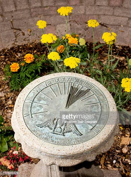 Yellow yaro surrounds a sundial at the center of the Shakespeare inspired area of the Texas Discovery Garden in Fair Park Texas Monday May 3 2010