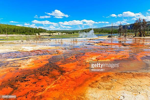 USA, Yellowstone National Park, Bisuit Basin, Firehole River