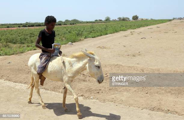 Yemeni boy rides a donkey to school in the Yemeni port city of Hodeidah on March 15 2016 The conflict in Yemen which escalated with the intervention...