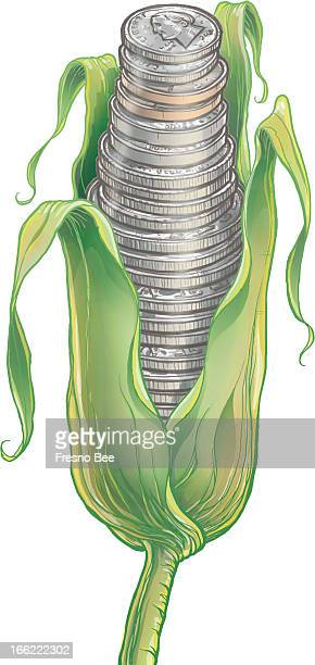 Yen Vang color illustration of an ear of corn represented as coins