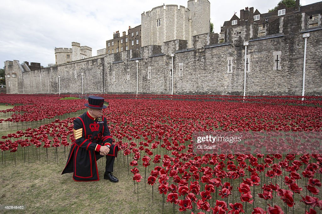 Yeoman Serjeant Bob Loughlin admires a section of an installation entitled 'Blood Swept Lands and Seas of Red' by artist Paul Cummins made up of...