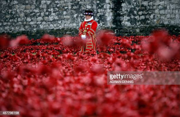 A Yeoman Warder stands amongst the poppies as Queen Elizabeth II and her husband Prince Philip visit the Tower of London's 'Blood Swept Lands and...