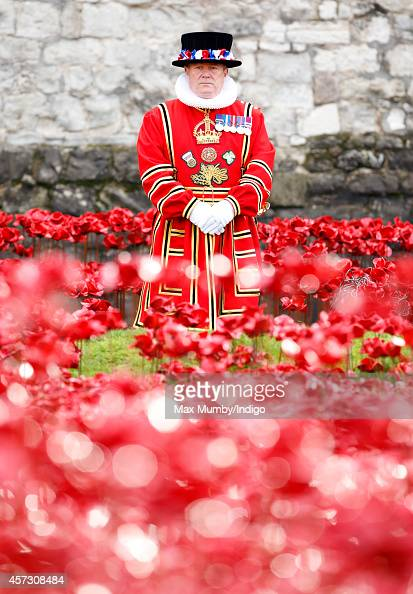 A Yeoman Warder stands beside a poppy field art installation entitled 'Blood Swept Lands and Seas of Red' in the moat of the Tower of London to...