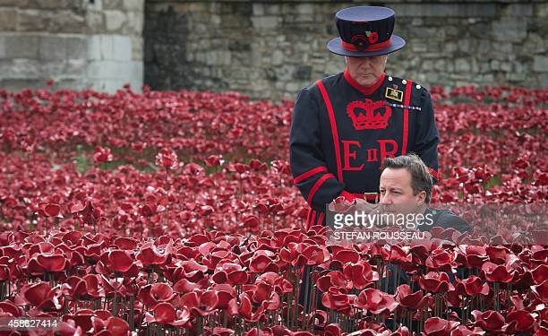 A Yeomen Warder stands by as British Prime Minister David Cameron plants a poppy in the 'Blood Swept Lands and Seas of Red' installation by ceramic...