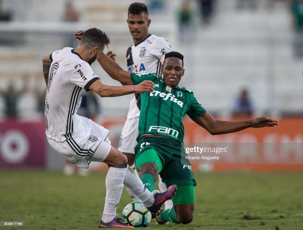 Ponte Preta v Palmeiras - Brasileirao Series A 2017