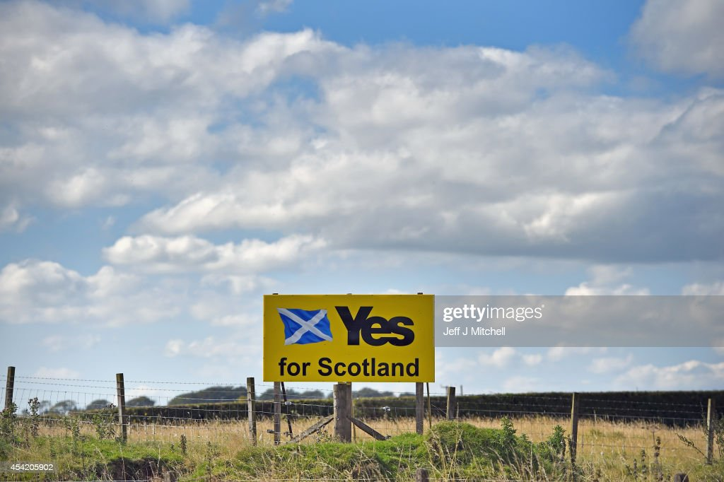 Yes campaign placards are placed in a field on August 26 2014 in Fenwick Scotland In less than a month voters will go to the polls to vote yes or no...